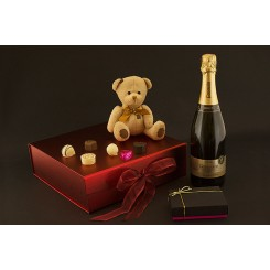 Sparkling Teddy Surprise Gift