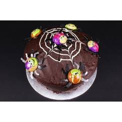 Halloween Witch Chocolate Fudge Cake