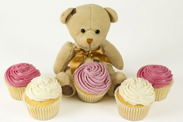 Cupcake Bear - Box of 6